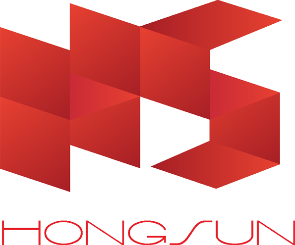 HONGSUN UNION TECHNOLOGY (HK) LIMITED